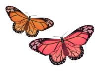Butterflies in Procreate | iPad Art