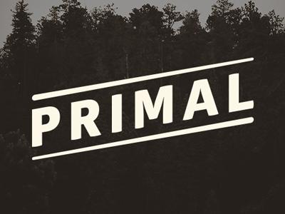 Primal Branding branding