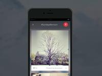 Screens for a social media app