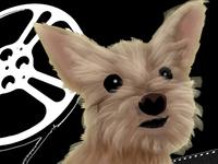 My sweet doggie 🐶