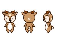 A deer named 芝芝