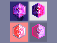 Socrates.AI Icons: Platonic Geometry