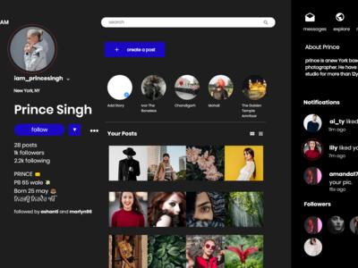 instagram desktop app concept