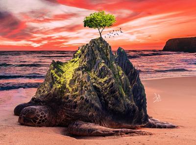 Turtle Island - Image Manipulation