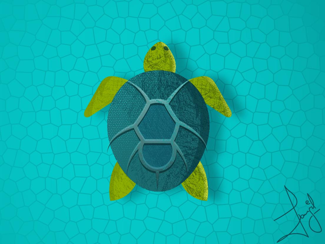 Spiturle Illustration water spider turtle branding minimal clean vector art logo illustrator animation design flat illustration
