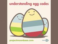 Understanding Egg Codes