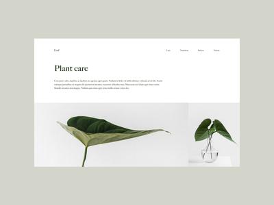 Leaf (No. 012)