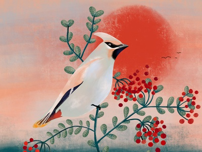 Waxwing waxwing red bird plants green nature flora fauna sunset design illustration