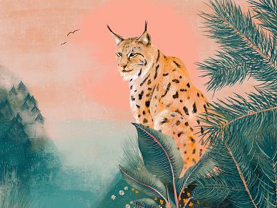 Lynx pine cat plants green sunset fauna flora nature lynx orange red illustration design