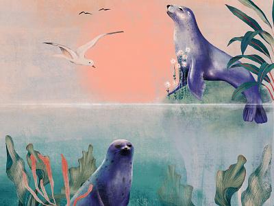 Seals plants seagull bird seal flora fauna nature green illustration design