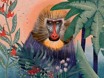 Baboon baboon monkey plants green fauna sunset flora nature illustration design