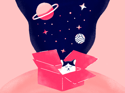 Cat in the universe world colors texture box universe illustration photoshop cat