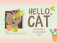 Hello, Cat