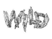 Wild typography