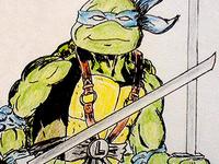 Leonardo of the Turtles