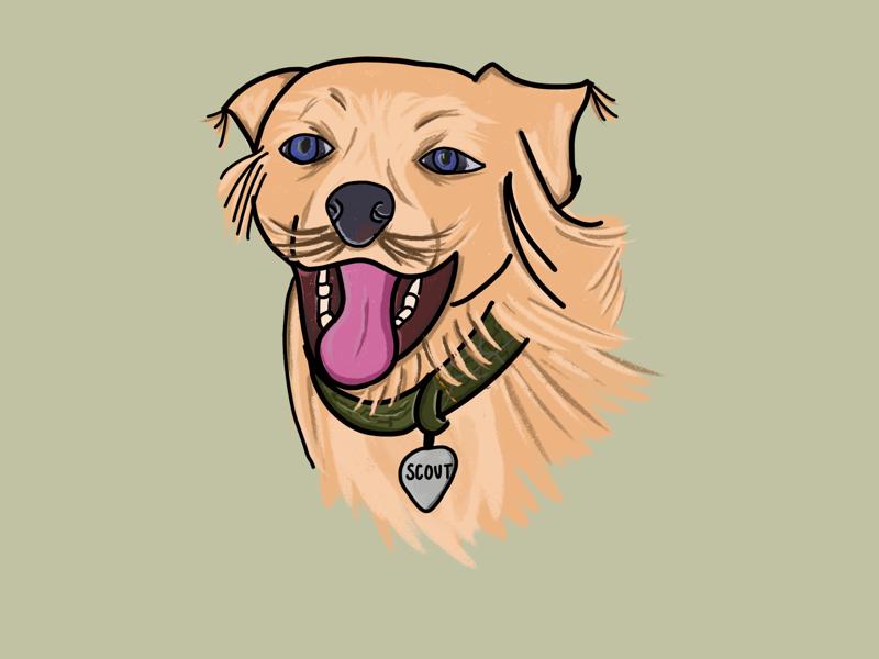 Scout digital drawing illustration dog apple pencil ipad procreate
