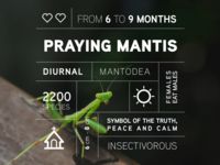 Bug data campaign: the Praying Mantis