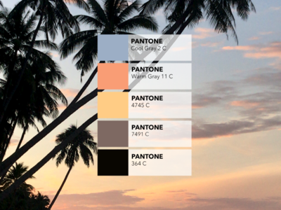 Pantone colors from pictures 🎨: The beach palm tree palmtree sunset beach inspiration identity creative colored design pantone