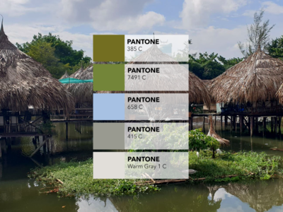 Pantone colors from pictures 🎨: The bungalows bundle mekong floods tropical party flyer tropical flyer inspiration creative colored design tropical leaves flood bungalow tropical