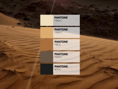 Pantone colors from pictures 🎨: The dune dribbble picture pics tropical sand illustration inspiration creative colored design pantone digital mui ne dunes