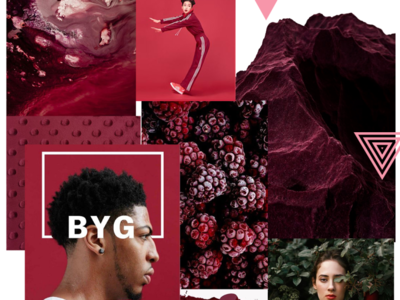 WTZ - September 2019 trend 🤫 red basket raspberry trend animation inspiration campaing typography identity illustration branding creative colored design