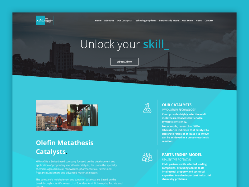 Ximo - Home Page sketch services team parallax green landing ui web website webdesign