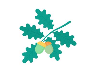 Day 266  - 366 Days Illustration Challenge - MintSwift fall autumn english oak oak tree tree plant branch oak acorns acorn vector art illustrations vector illustration flat illustration digital illustration illustrator mintswift flat design flatdesign illustration