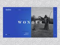 Bluestone photography landingpage card wonder wizard resort wales website digital clean ui concept ux design