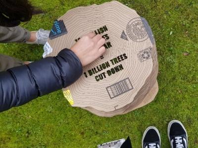 cardboard stump sustainability exhibition space design