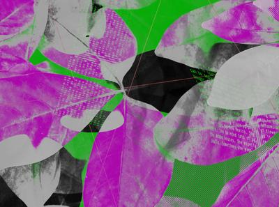 Kitsch graphic typography graphicdesgn webdesign illustration website design