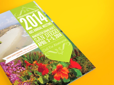 ABS Annual Meeting cali california typography san diego beach sunny conference meeting layout infographic print