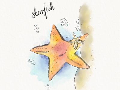 Watercolor starfish.