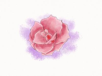 Watercolor rose.