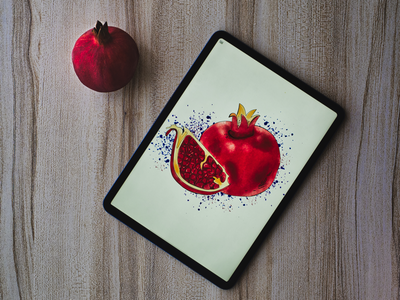 Pomegranate. sketch watercolour watercolor splashes splash shadow seed procreate pomegranate lettering ipad highlight fruits fruit drawing calligraphy design brush art apple