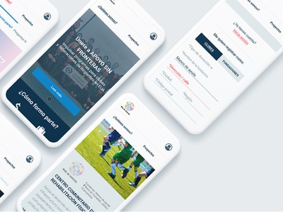 Website of the secretary of foreign relations mobile version interface graphic ux web ui