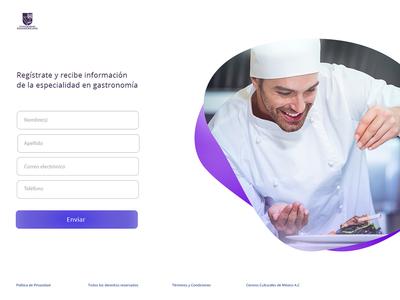 Landing Page University Panameric