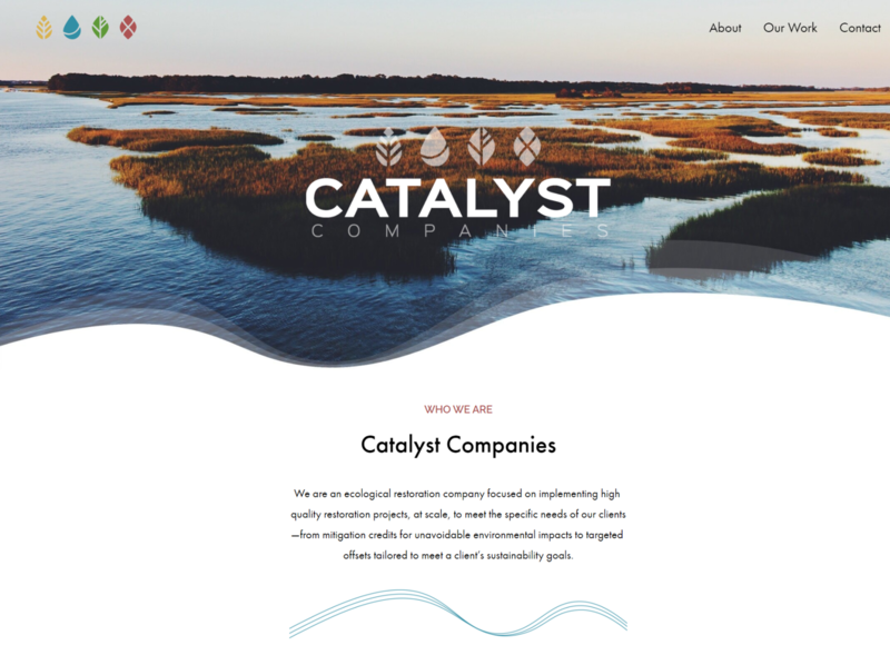 Catalyst Companies environment web design small business landing page home page