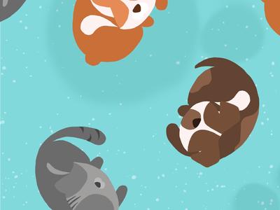Pet pattern