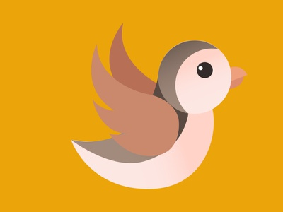 Flying Bird Animation illustrator after effects flying animation