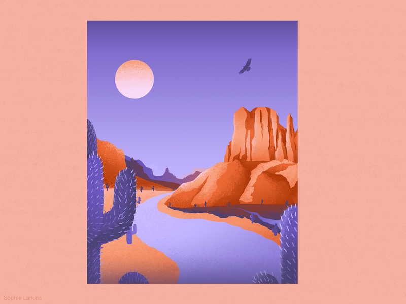 The Wild West grand canyon sunset monument valley textured nature illustration nature cactus colour palette landscape illustration landscape illustration desert arizona wild west