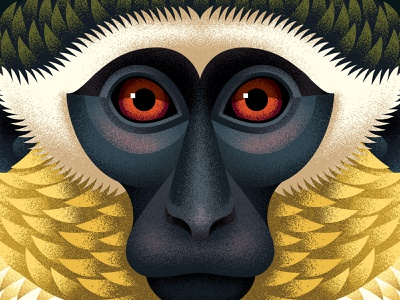 Green Monkey chimp face portrait monkey close up vector adobe animal texture illustration anano
