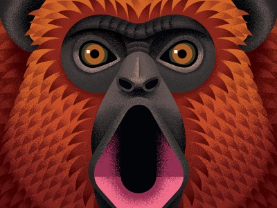 Howler Monkey rum monkey close up vector adobe animal texture illustration anano