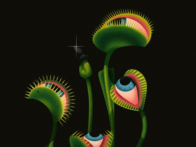 It's a trap vector design texture illustration anano surreal fly flytrap venus trap