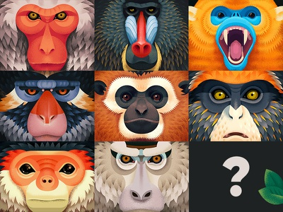 Old World Monkeys animals illustration texture dissolve behance primates anano monkeys