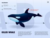 Killer Whale UI