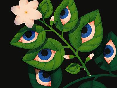 Jasmine 👁 jasmine eyes eye leaf leaves flower close up dissolve 2d illustration texture anano