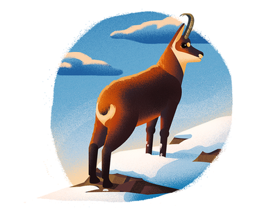 Chamois in snow childrensbook book animals chamois snow design animal 2d texture illustration anano