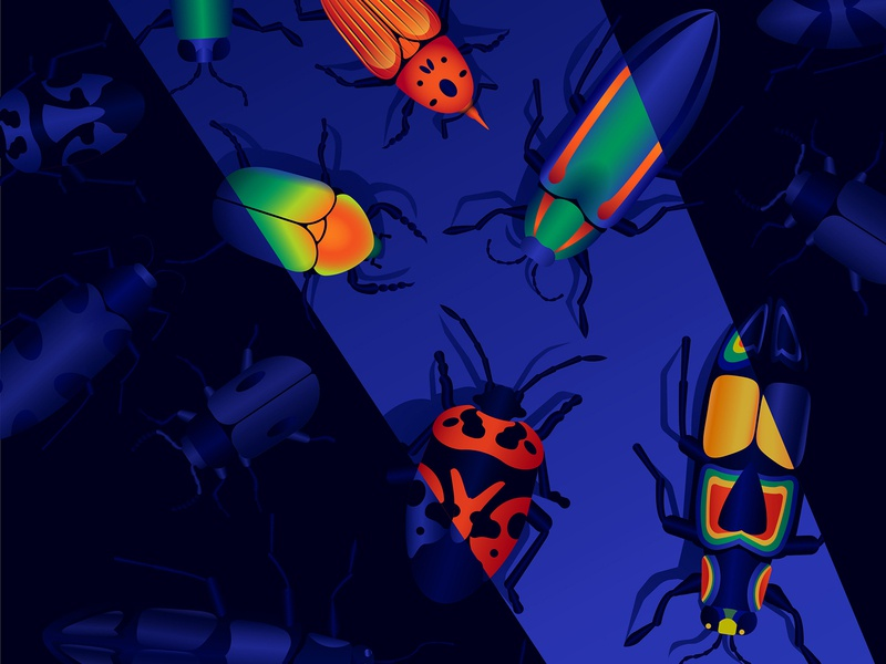 Bugs ladybug blue colors insects insect gradient bugs vector adobe illustration anano
