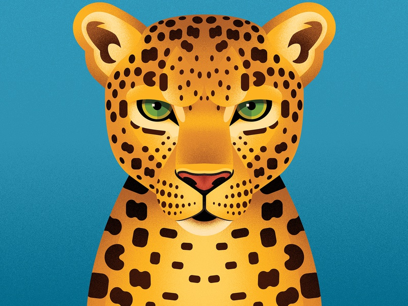 Leopard portrait portrait face geometry cat book animal leopard illustration anano
