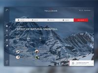 Telluride Website Concept